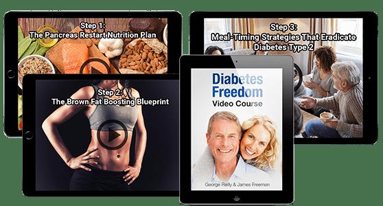 diabetesfreedom review plan